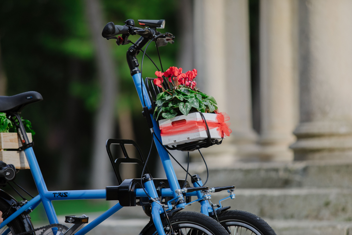 Triciclo per adulti a pedalata assistita
